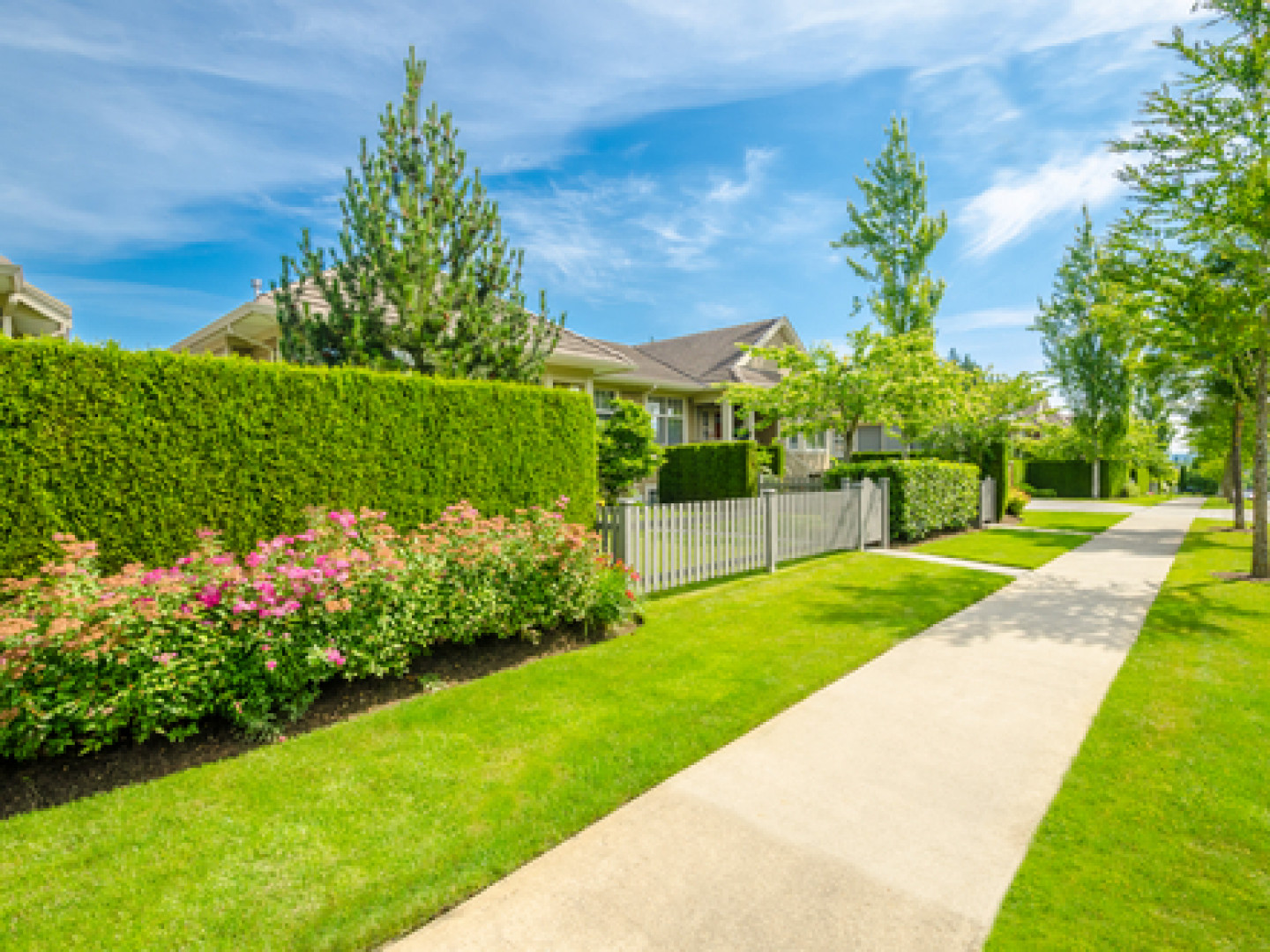 landscaping services in Bethany and Woodbridge, CT
